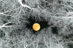 Aleksander Čufar - Moon-W77