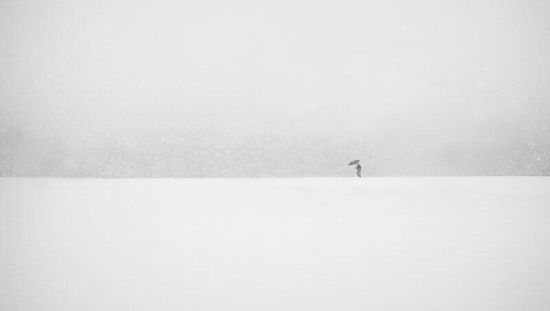 Jasmin Suljanovic - Sam v snegu
