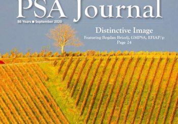 """""""Prepoznavne podobe"""" Bogdana Briclja v reviji PSA Journal"""